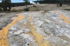 yellowstone- - 31